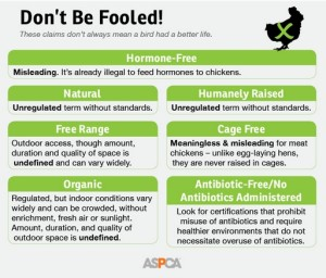 DontBeFooled