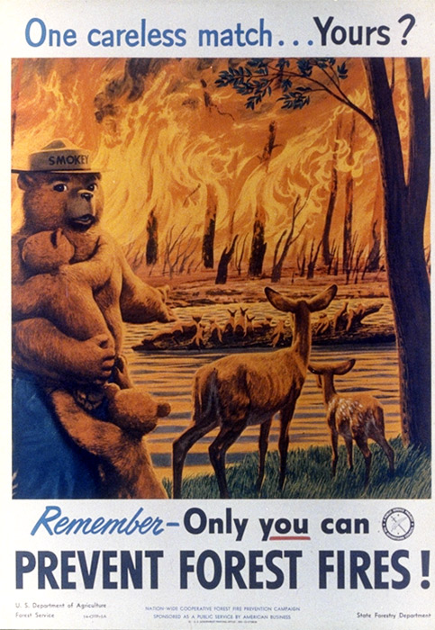 Smokey Bear Said It Best - Only YOU Can Prevent Wildfires